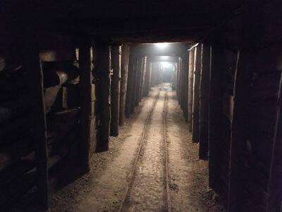 Slika rova v rudniku z lesenimi podpornimi stebri in tiri